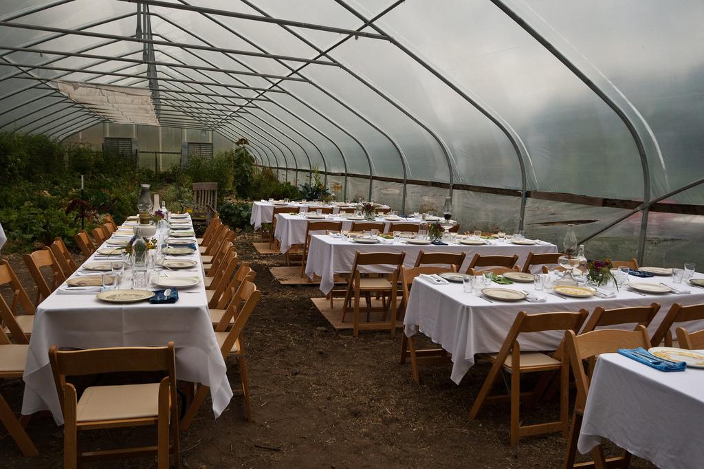 Farm to Fork dinner.Andrew Malone.jpg
