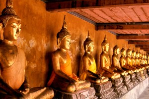 Wat Mahathat is the common name for Buddhist temple.
