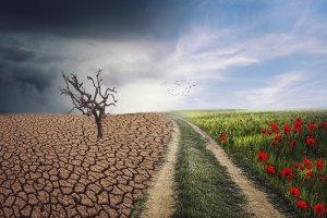 landscape-Climate Change