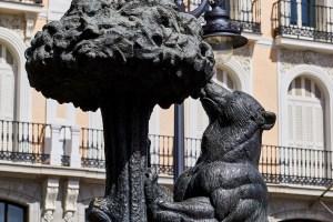 spain-bear and strawberry tree