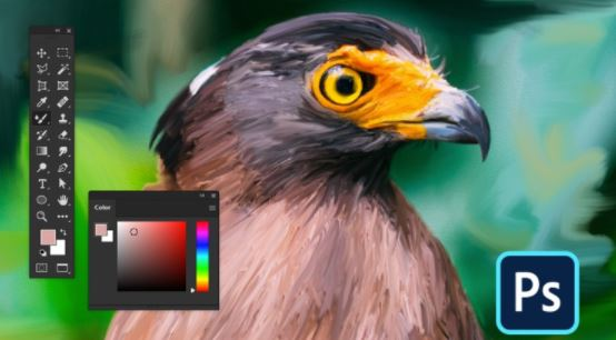 Introduction to Adobe Photoshop CC from 0 to intermediate