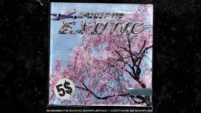 Basobeats Exotic Sample Pack