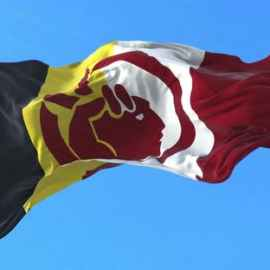 Videohive American Indian Movement Flag 33526353 Free Download