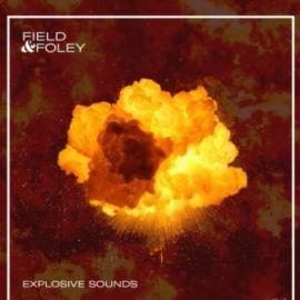 Field and Foley Explosive Sounds [WAV] (Premium)