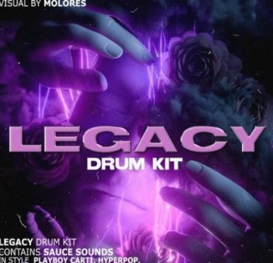 molores Legacy Drum Kit [WAV, Synth Presets]