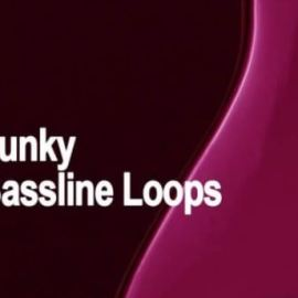 AudioFriend Funky Bassline Loops [WAV] (Premium)