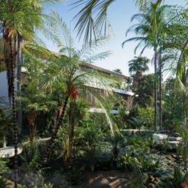 Globe Plants – Bundle 15 – Palm World (Premium)