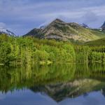 Canada-PR-Visa-PNP-09072.png