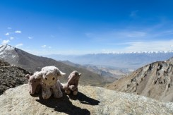 2014-07-24 09-56-55 Nubra Valley