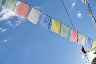 2014-08-10 08-42-26 Ladakh Zanskar Karsha