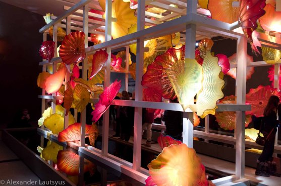 Chihuly-18