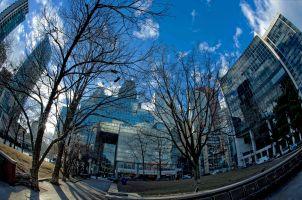 City of Toronto's Berczy Park