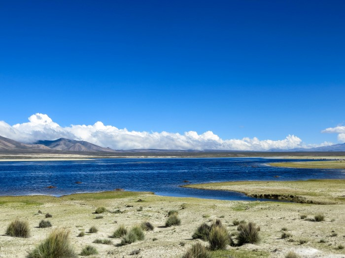 Laguna Grande Inca Trail Tarija Bolivia