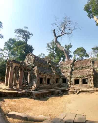 Angkor Wat Tour: Ta Prohm Tomb Raider