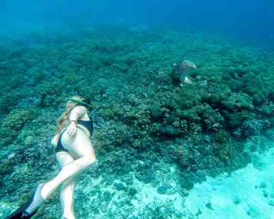 Best things to do on Gili Air Island: Go Snorkeling