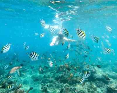Snorkeling Gili Air - 720 4x5
