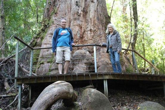 Huon Trail, Tasmania - Wyndham timeshare Owner