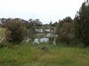 Ramada Phillip Island wetland walk