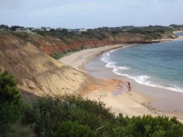The Nobbies, Phillip Island, VIC