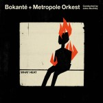 Bokanté+Metropole Orkest Conducted by Jules Buckley: What Heat