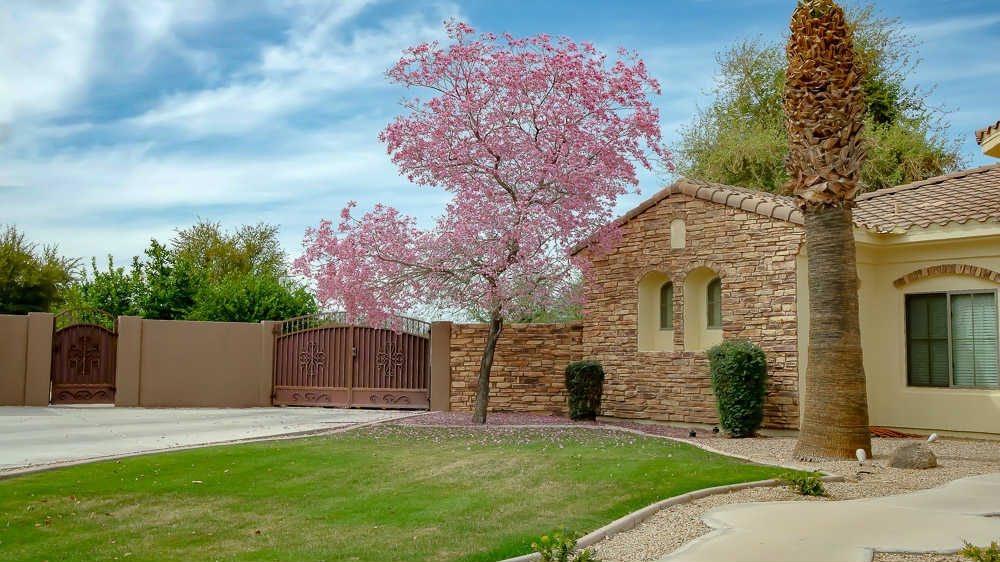 Terraranch | Queen Creek, AZ Neighborhood