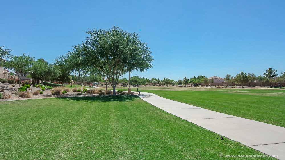 Arizona Reflections | Neighborhood In Chandler, AZ