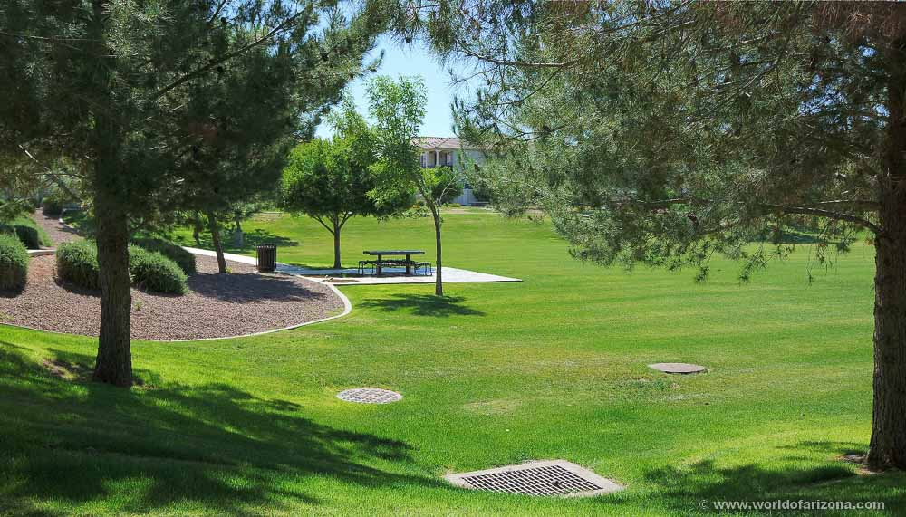 Cooley Station North | Neighborhood In Gilbert, AZ