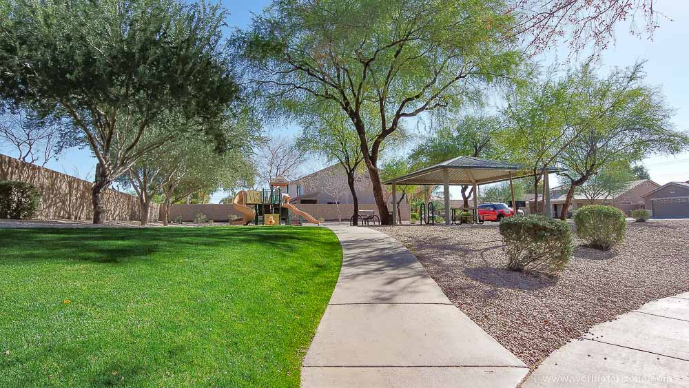 Saguaro Canyon | Neighborhood In Chandler, AZ