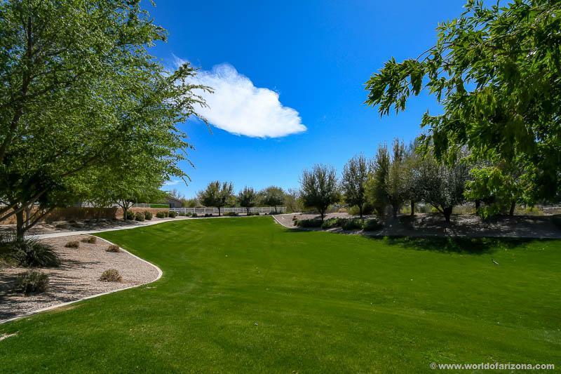 Arroyo De La Reina   Neighborhood In Queen Creek, AZ