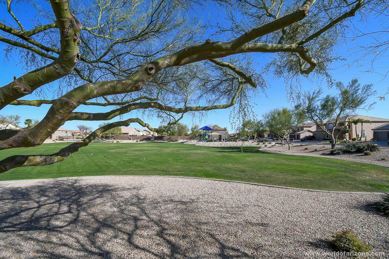 Rancho Bella Vista | Neighborhood In San Tan Valley, AZ