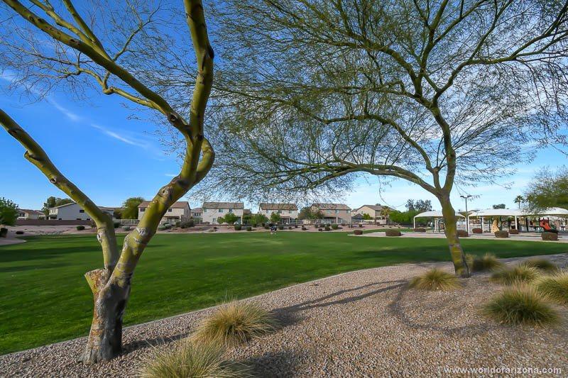Taylor Ranch   Neighborhood In San Tan Valley, AZ