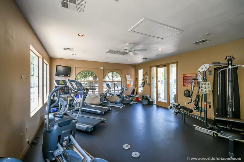 Lakeshore at Andersen Springs Condominiums | Neighborhood In Chandler, AZ