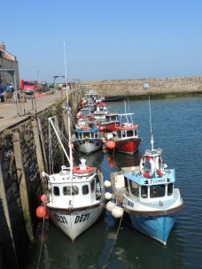 Fishing boats all lined up by the East Sands by Stephanie Woods