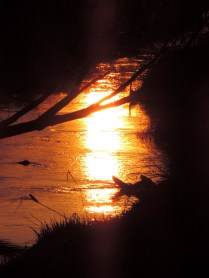 Sunset on the Dichty, Bridgefoot