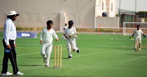 Cricket 04