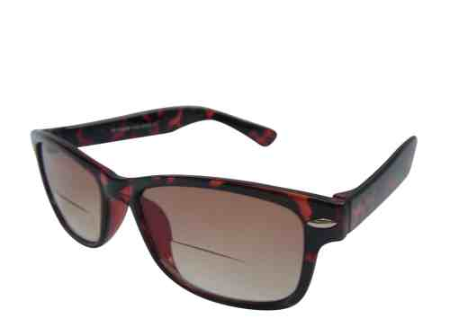 Wayfarer Bifocal Sunglasses in Tortoiseshell