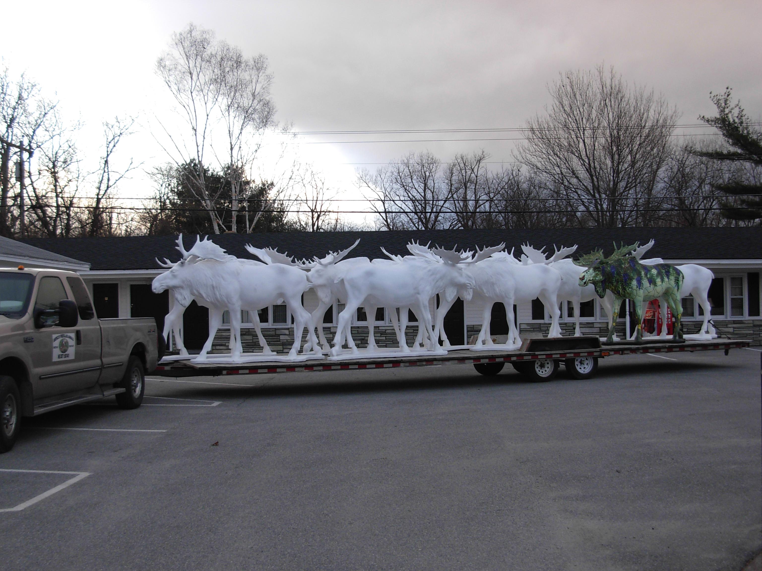 2009-mar29-benningtonmoose011