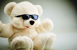 Teddy Day 2020 : Why girls love teddy, Shayari, couples celebrate,