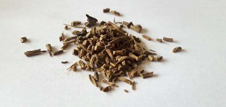 Valerian dosage for anxiety