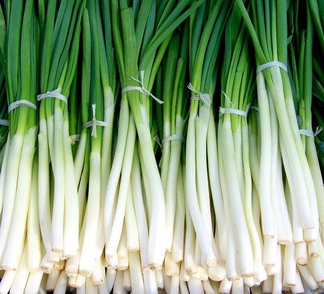 Green onion Foods to cure Premature ejaculation