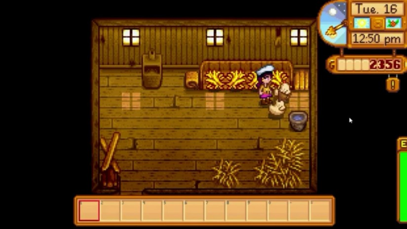 Stardew valley how to feed chickens