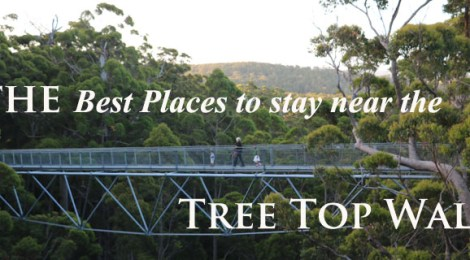 Best places to stay near the Tree Top Walk