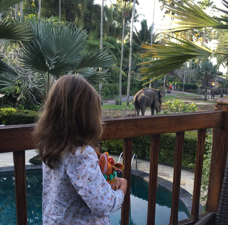 elephant-park-edit