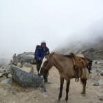 trekking in peru with children, trek in peru with tweens, trek in peru with kids, inca trail with kids, inca trail with children, inca trail with tweens, should i trek with kids?