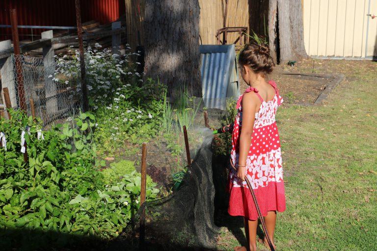 garden_watering_sm
