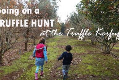 truffle hunt, truffle kerfuffle, black truffle, truffle hunting, Manjimup Truffles, Manjimup