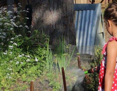 The Benefits Of Gardening With Children