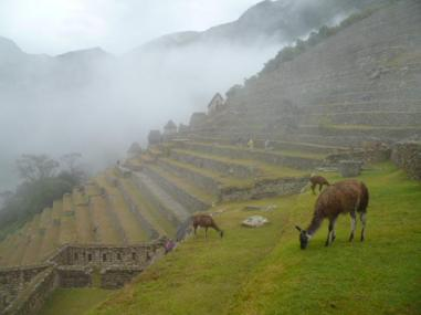 "Shrouded in mist, it is easy to see why Machu Picchu appeared ""lost"""