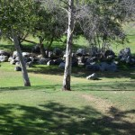 Park with rocks12