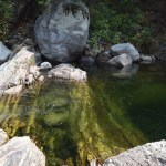 Pond in a creek12